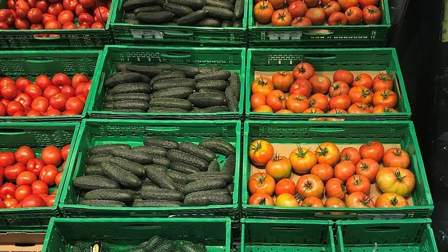 Mercadona comprará en la Región más del 60% de los pepinos que venda en 2020