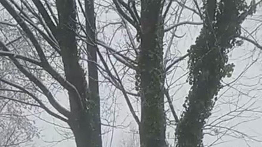 Nieva en Hervás