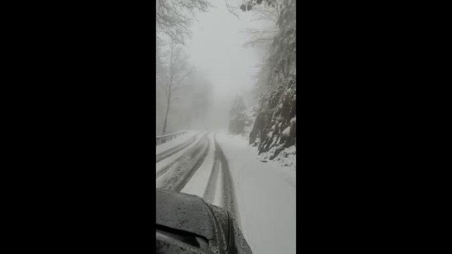 El temporal deixa neu a punts alts del Berguedà i del Moianès