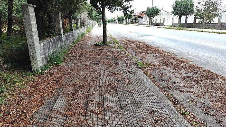 El Partido Popular solicita la limpieza de las aceras de la Rúa da Moa