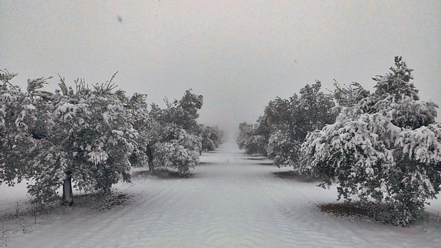Erst Schnee, dann extreme Kälte: So ist die Lage in Spanien