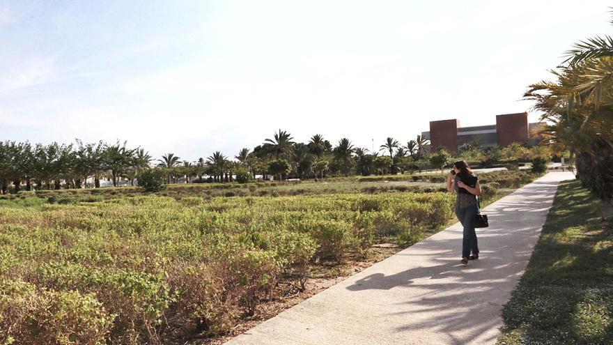 Un nuevo edificio en el campus de Elche con dos platós potenciará los estudios audiovisuales en la UMH