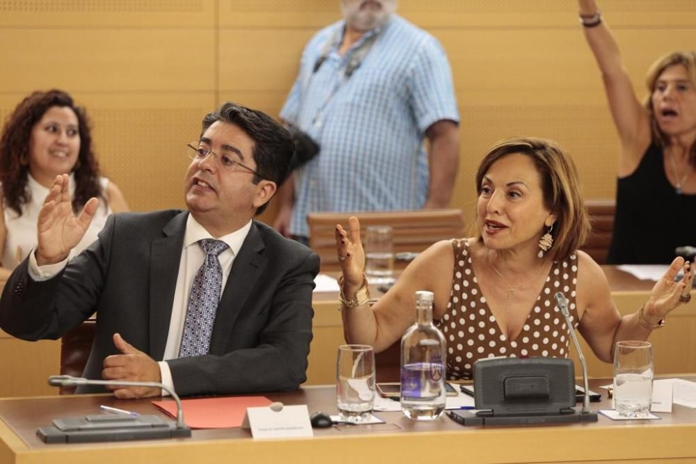 Pleno extraordinario en el Cabildo de Tenerife