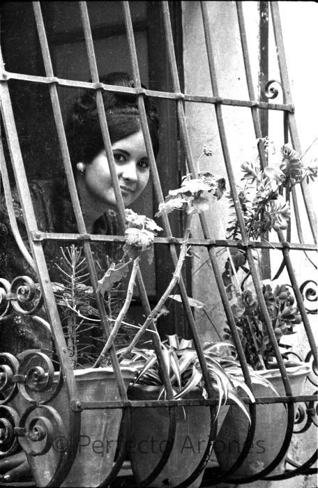 HOGUERAS. BELLEA DEL FOC 1968