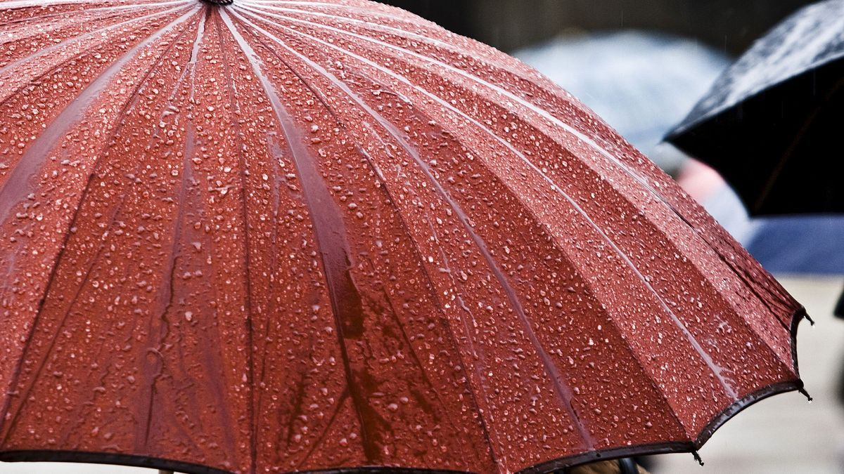 Una persona pasea bajo un paraguas.