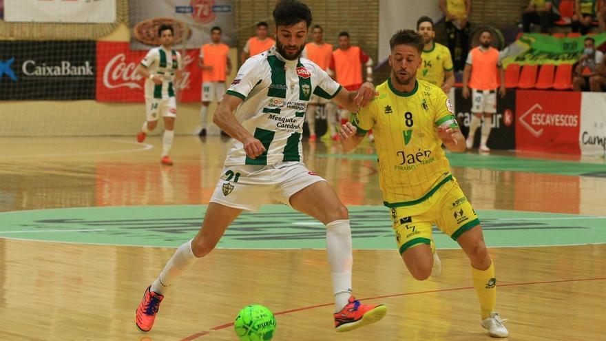 Los derbis andaluces que le esperan en la próxima liga al Córdoba Futsal