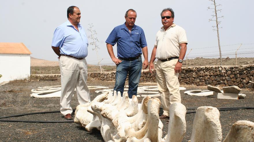 Muere Manuel Carrillo, biólogo marino y presidente de Canarias Conservación