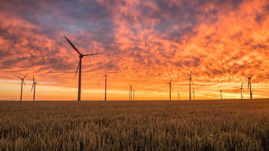 """Denuncian el impacto """"inaceptable"""" de las renovables en Canarias"""