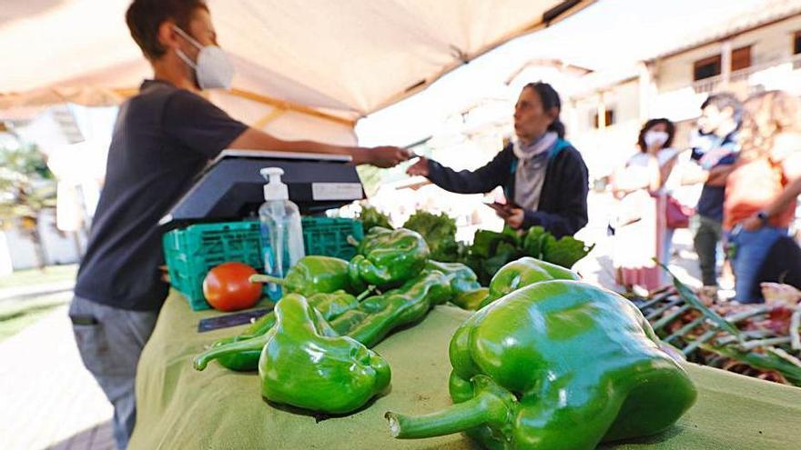 Mercado ecológico y artesano de Raíces