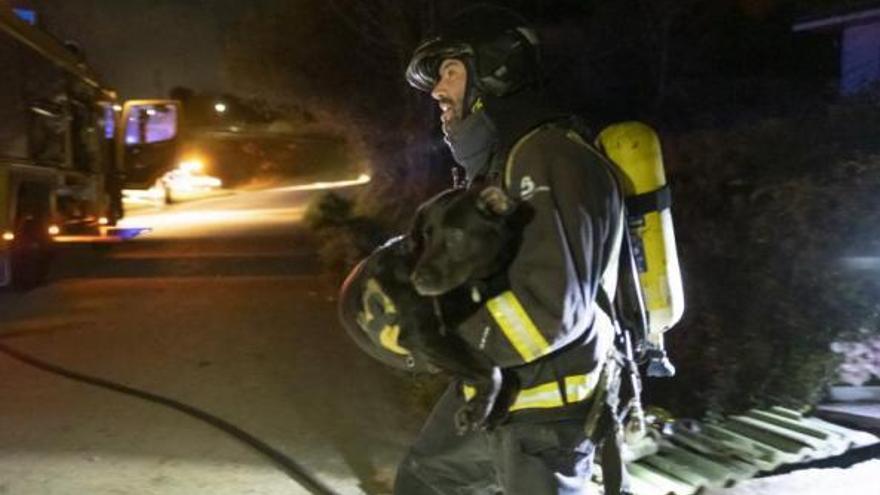 Investigan el incendio de la casa de Ribadesella donde murió un alemán: vivían allí sin electricidad y con dos perros que se salvaron