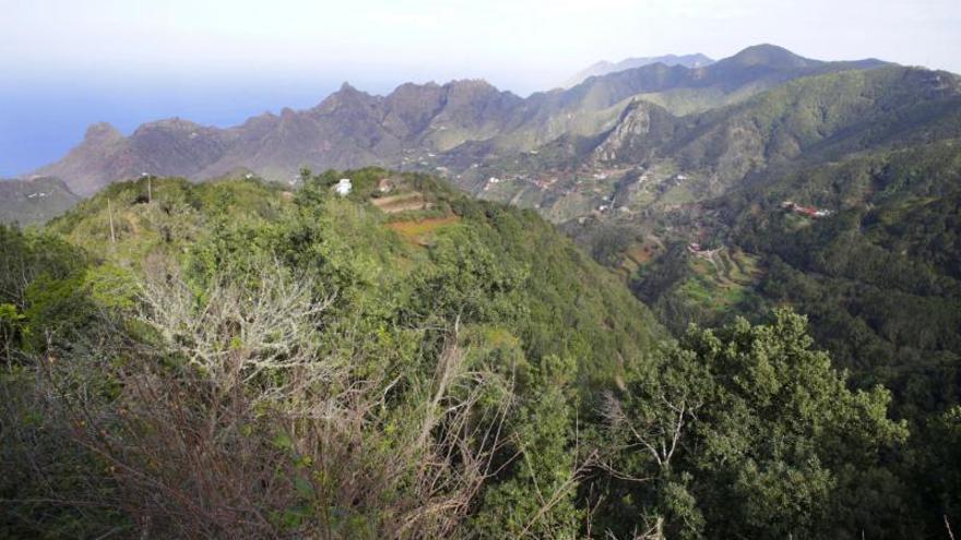 Casas de la Cumbre, el techo de Anaga