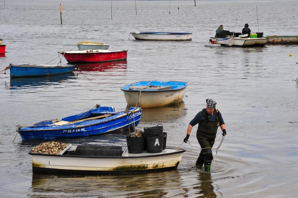 Parquistas de Carril y mariscadores de Vilaxoán durante su vuelta a la actividad.  // FdV