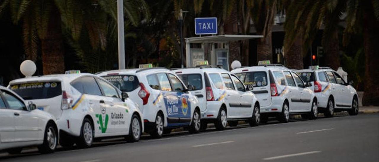 Movilidad abre el proceso de reforma de la ordenanza del taxi