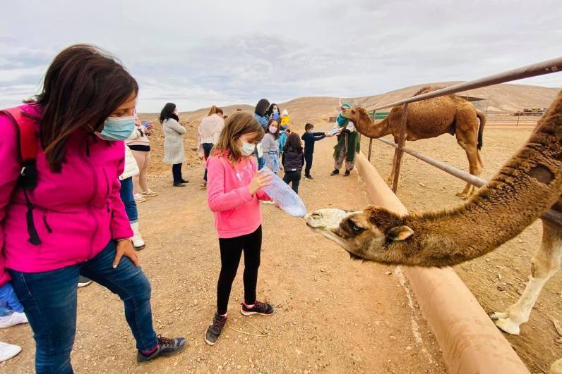 Una niña da de beber a un ejemplar del Oasis Wildlife.