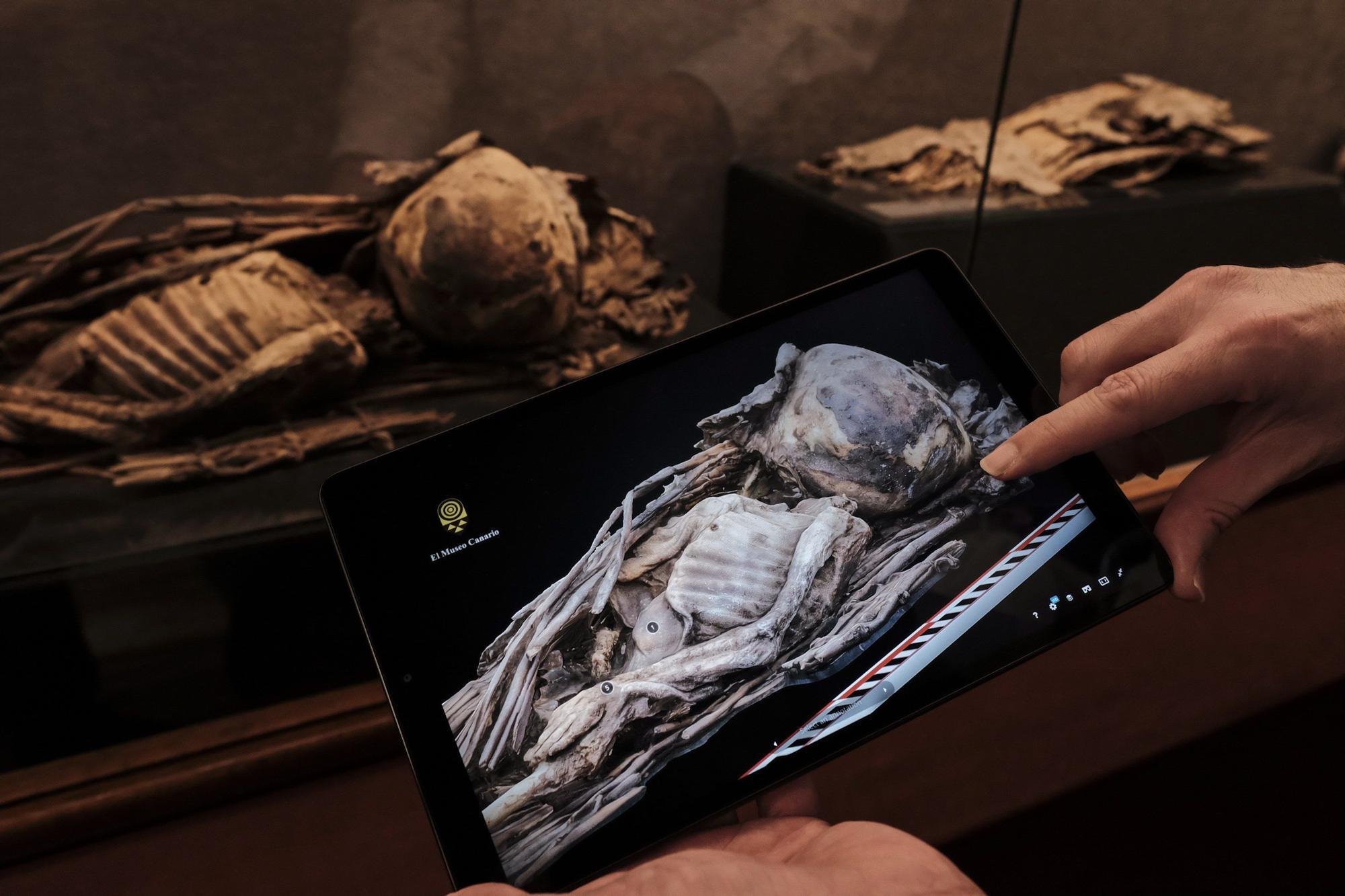 El Museo Canario en 3D