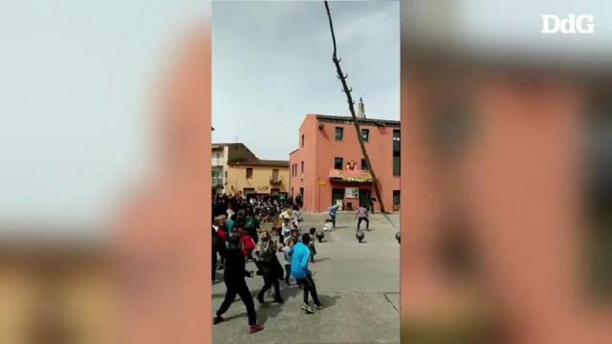 La tallada de l'arbre de Maig de Cornellà del Terri gairebé acaba amb tragèdia