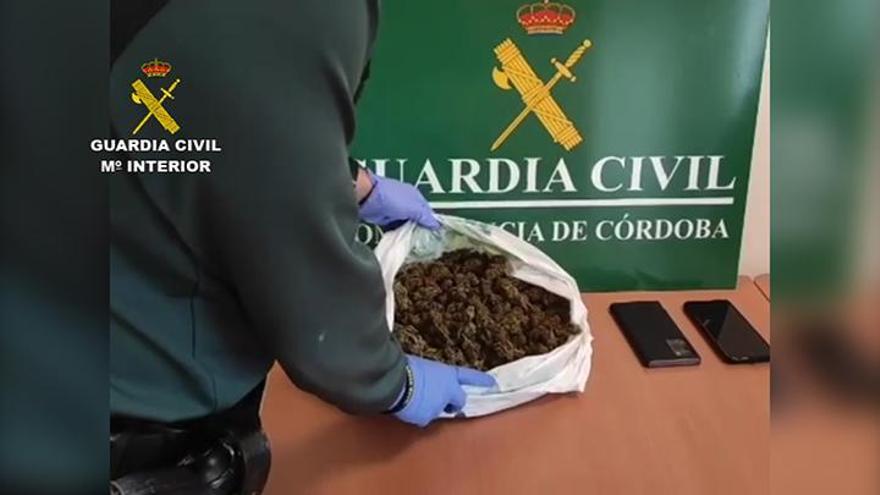 Dos detenidos en Montilla tras intervenirles la Guardia Civil medio kilo de marihuana