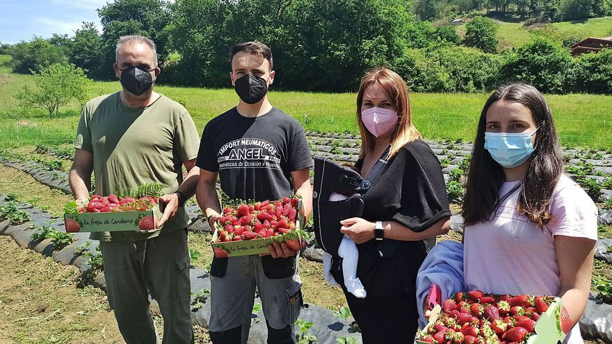 Las fresas, de mano común en Cuero
