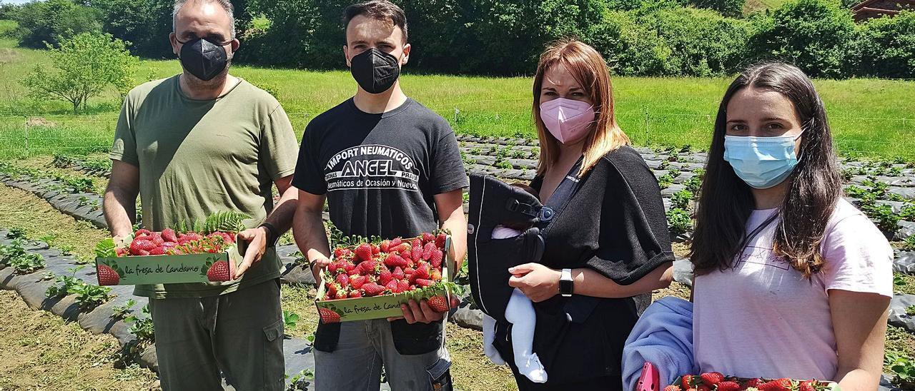 Alberto Ibias, David Álvarez, Lucía Ronderos, con Celia en el portabebés, y Elena Pérez, con las primeras fresas de la temporada.   S. Arias