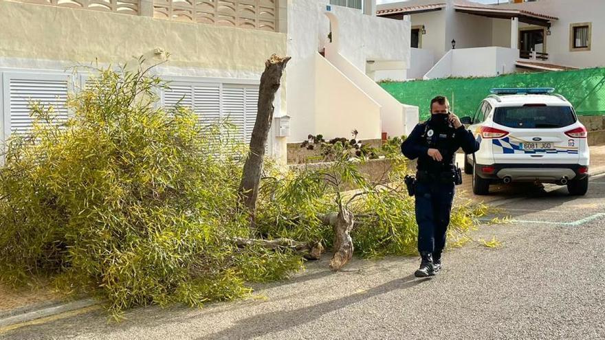 Ibiza registra ocho incidentes por el viento