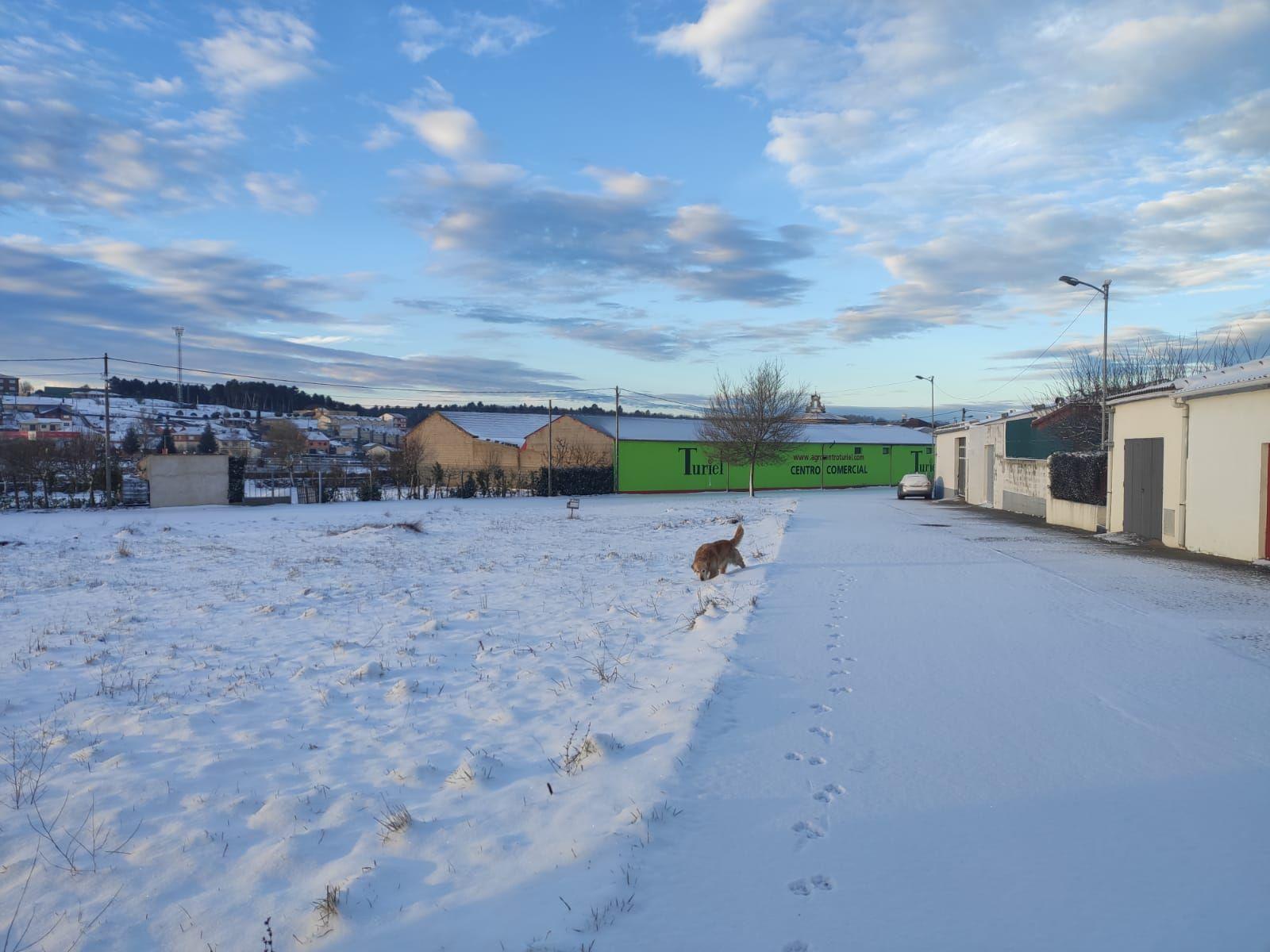 La nieve del temporal Filomena llega a Aliste