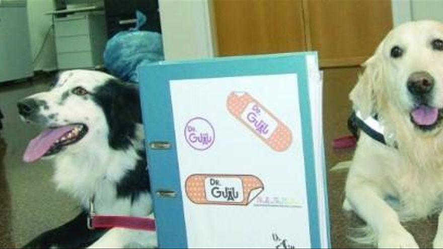 Dos perros doctores para curar niños
