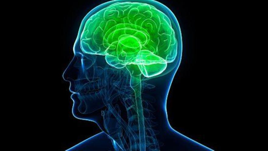 Vinculan los golpes en la cabeza de los niños con el déficit de atención e hiperactividad
