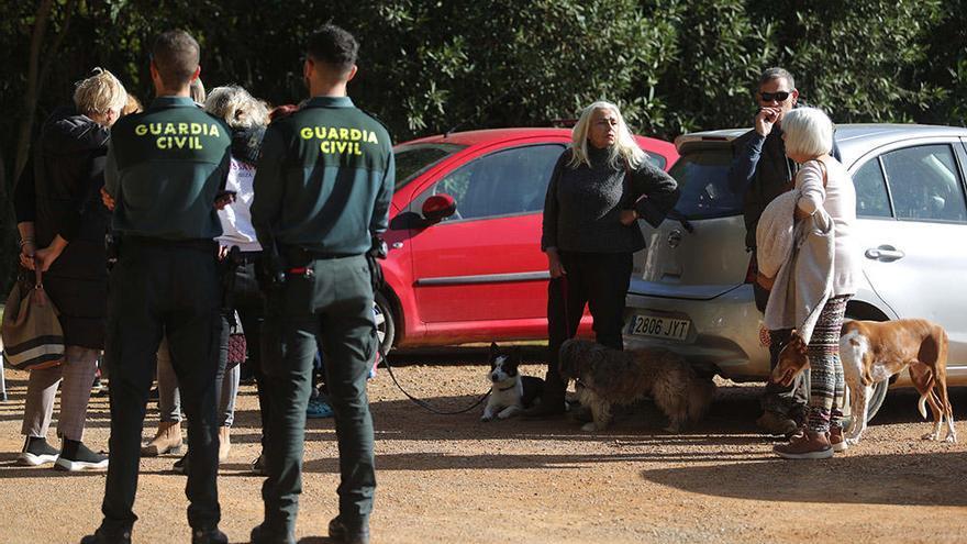 La presión de los animalistas evita el traslado de diez podencos de Ibiza a Mallorca