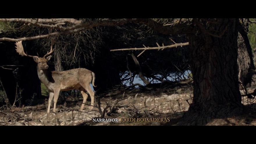 """Manu Galipienso estrena """"Animales, por el camino de en medio"""" en redes"""