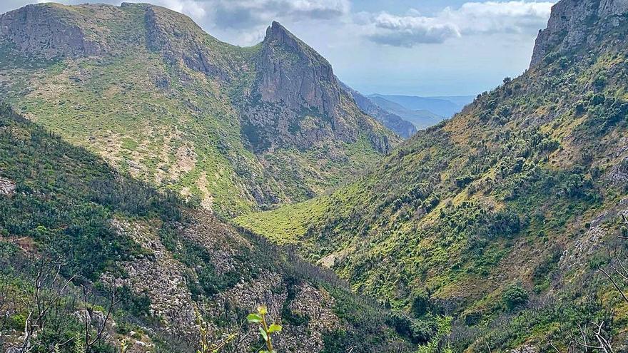 La muntanya es regenera en el «surar» de Barx, Pinet i Llutxent