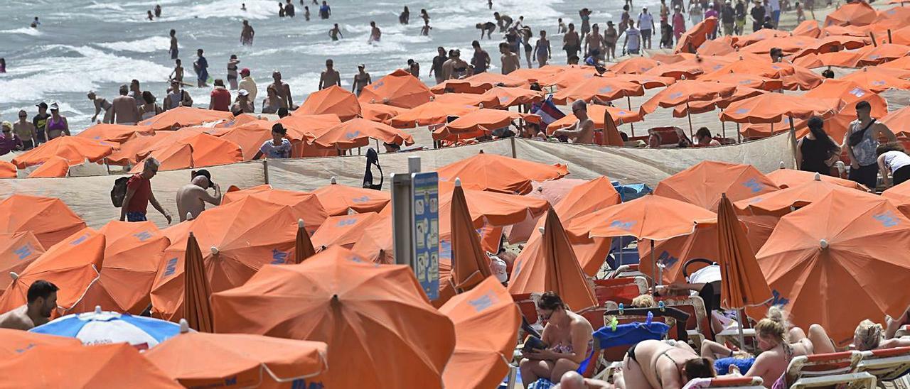 Imagen de archivo del servicio de hamacas de Playa del Inglés, servicio por el cual se deben 2,5 millones de euros. | | ANDRÉS CRUZ