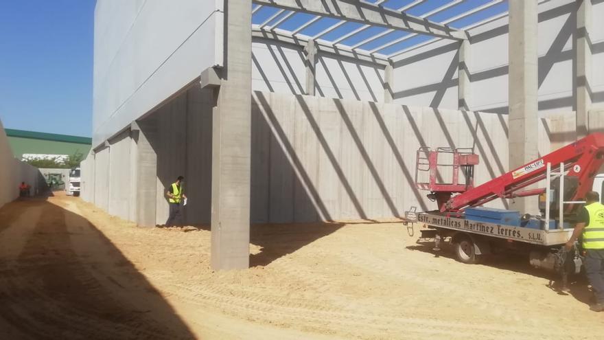 El Consell reanuda las obras de la primera planta de transferencia de residuos de la Vega Baja