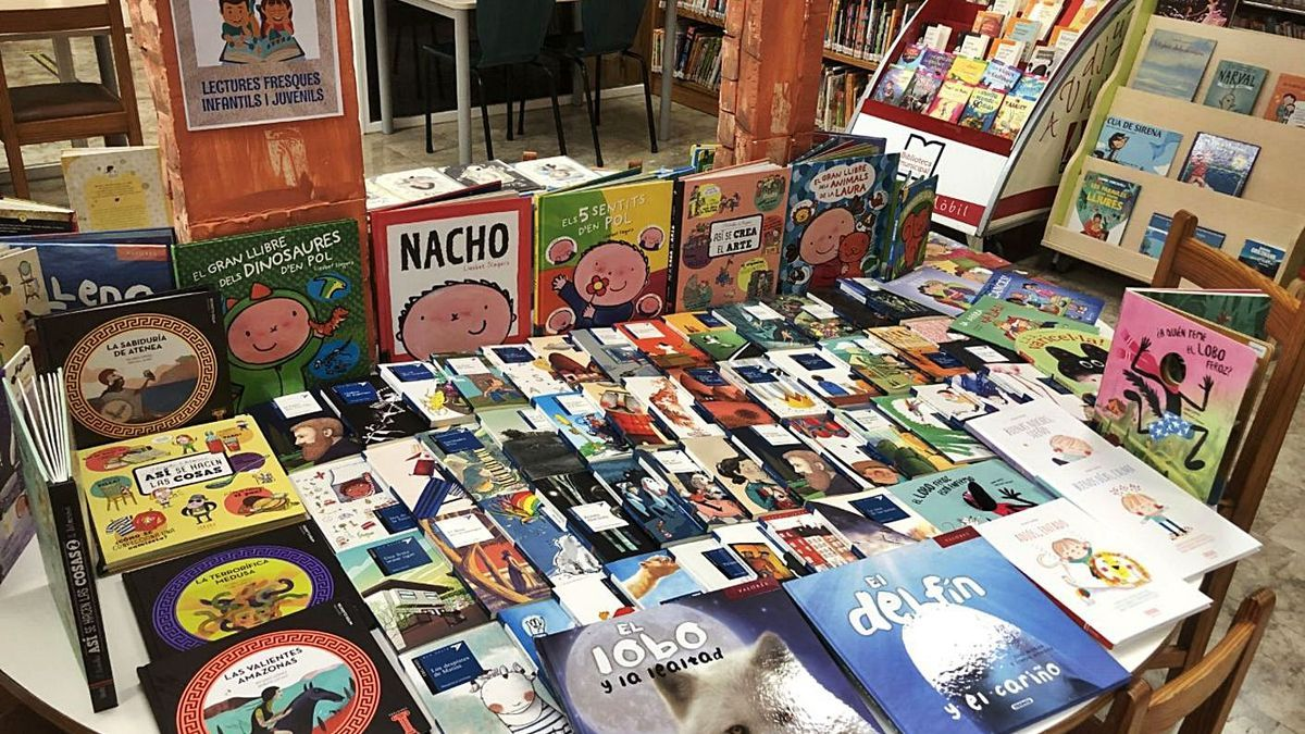 Libros en la biblioteca municipal de Can Ventosa. | AE