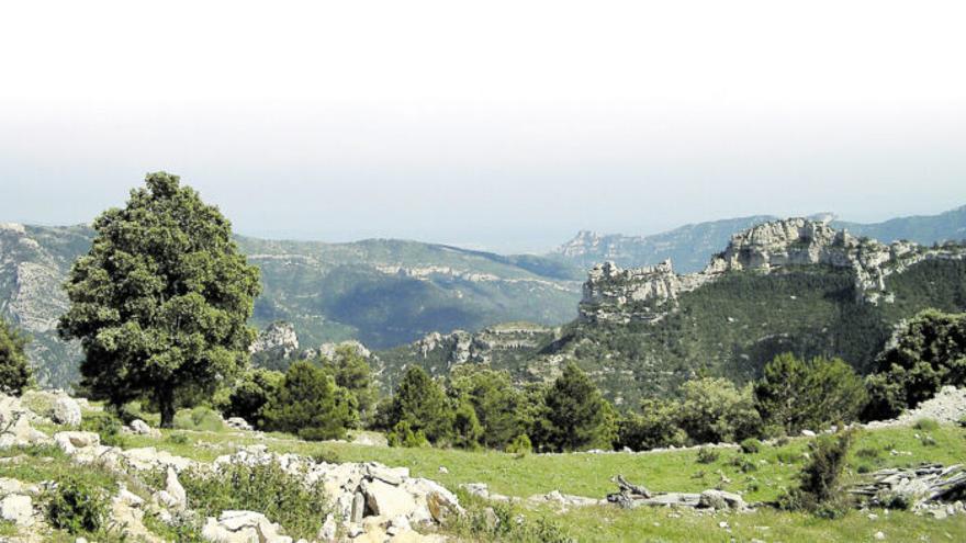 Custodia de territorio: restaurando el planeta