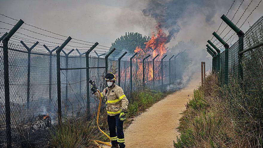 Un incendi al costat de la Ricarda, a tocar del Prat, crema 600 metres quadrats