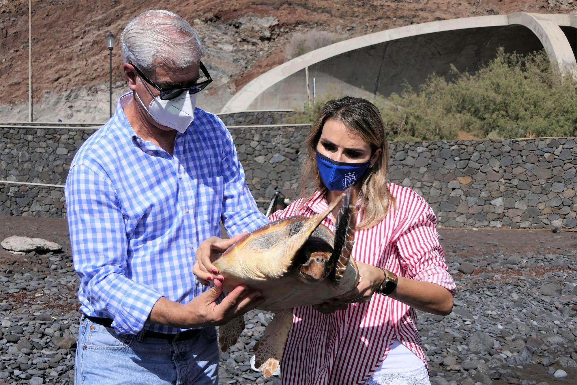 Liberan tres tortugas bobas en Timijiraque (El Hierro)