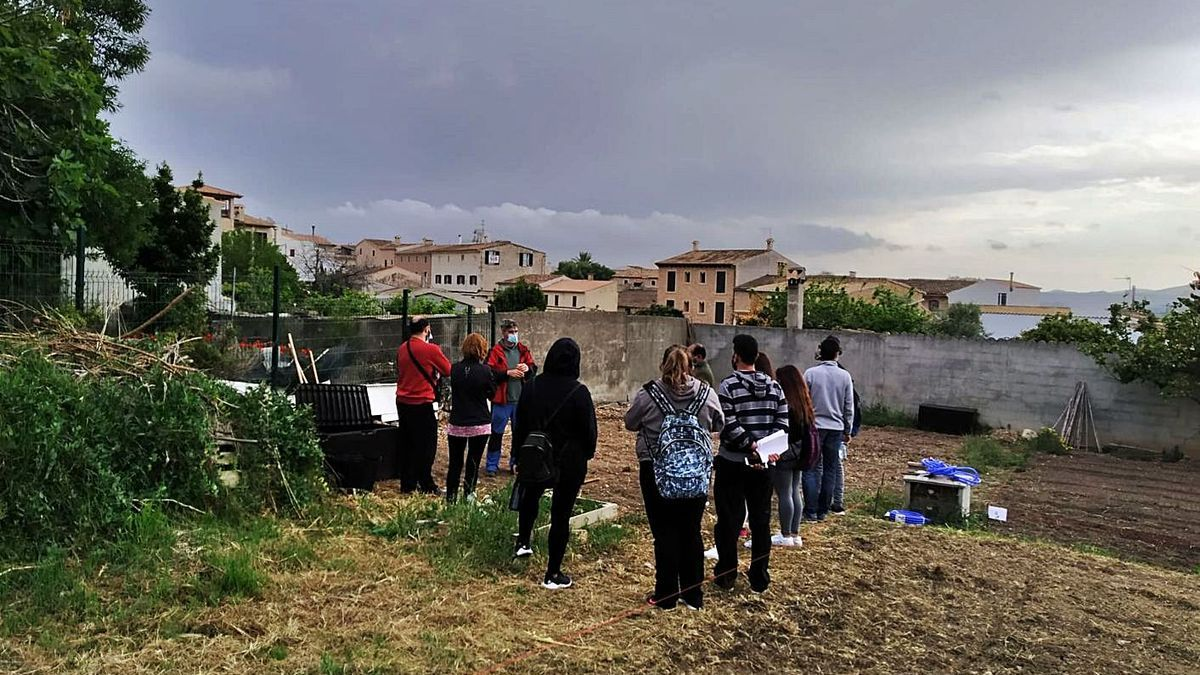 Los usuarios de los huertos urbanos reciben formación y asesoramiento.