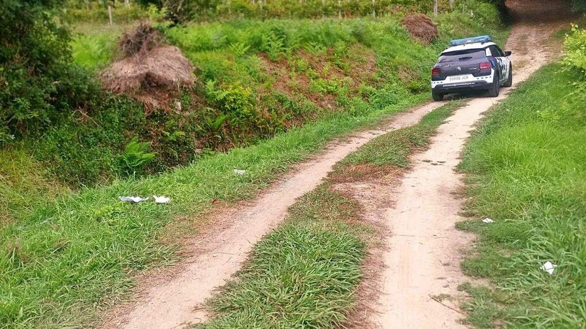 Pista forestal de Combarro en el que el sospechoso abandonó el coche que había sustraído.