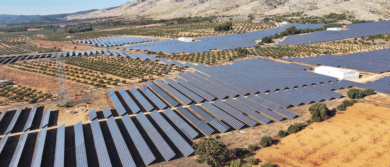 Imagen aérea de una planta fotovoltaica de la comarca del Alto Vinalopó instalada en una finca arrendada por un agricultor de Beneixama.   ÁXEL ÁLVAREZ