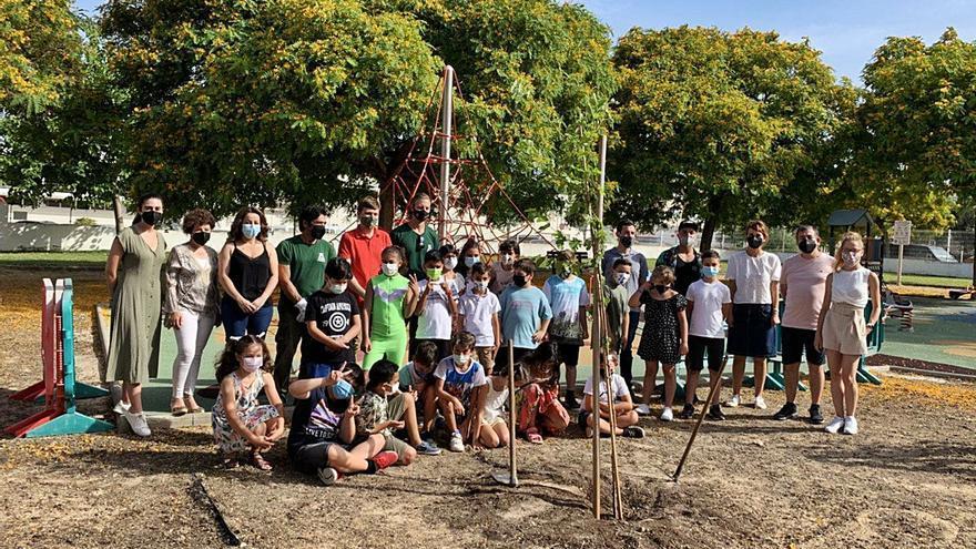 Alumnos del CEIP Villangómez de Ibiza plantan la cantidad de papel que han ahorrado