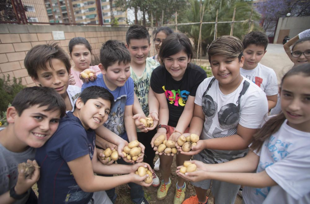 Hort escolar al CEIP Pablo Neruda València