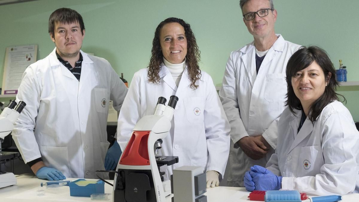 Castellón estudia el efecto del sobrepeso en gestantes