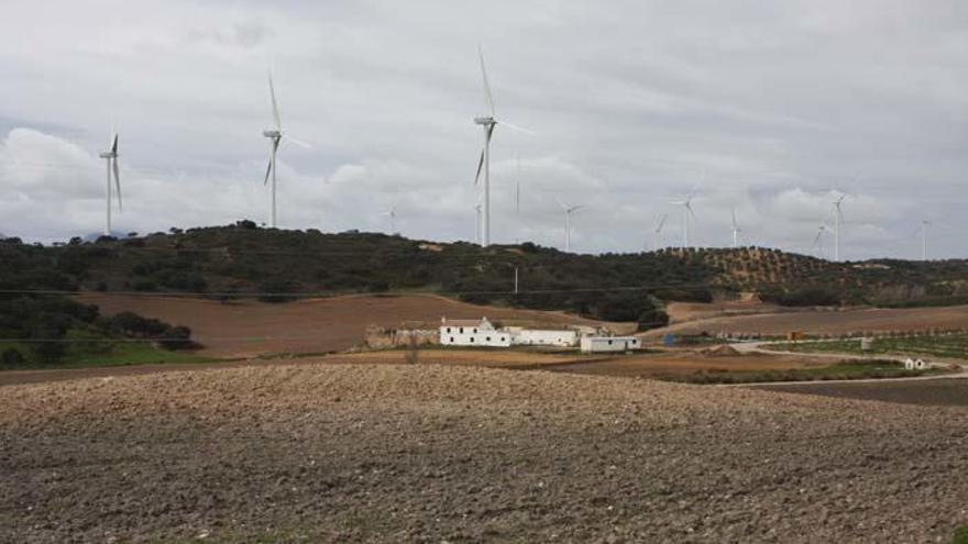 Endesa conecta a la red el parque eólico en Málaga tras una inversión de 35 millones