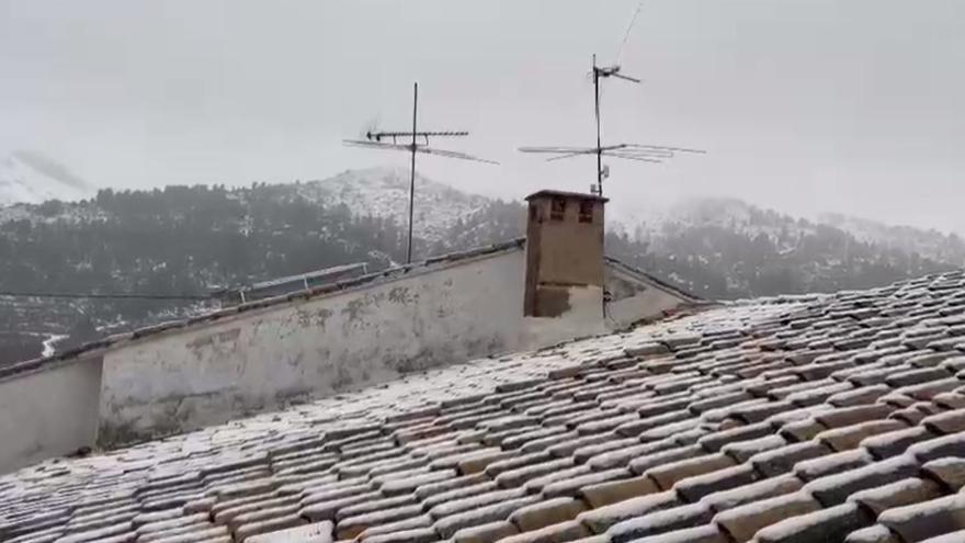 Vuelve a nevar en Fageca