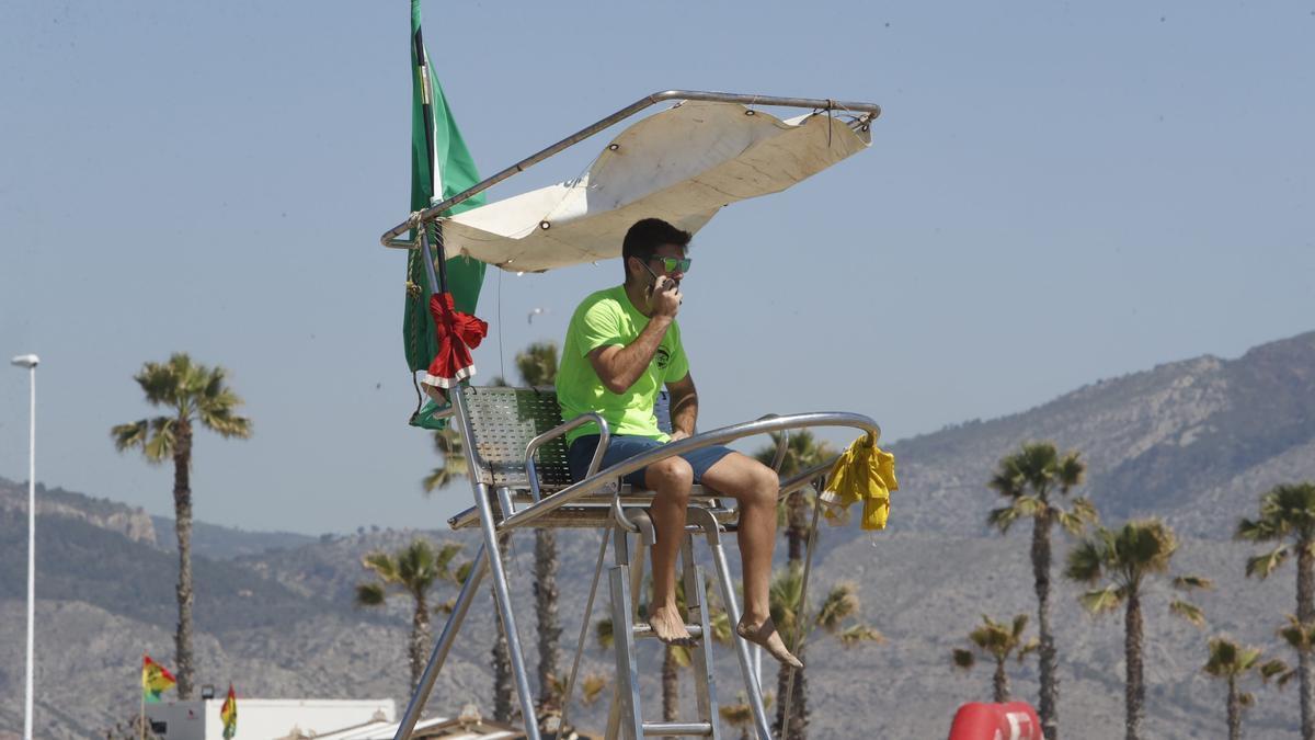 Un socorrista vigila las playas de Castelló, el pasado verano.