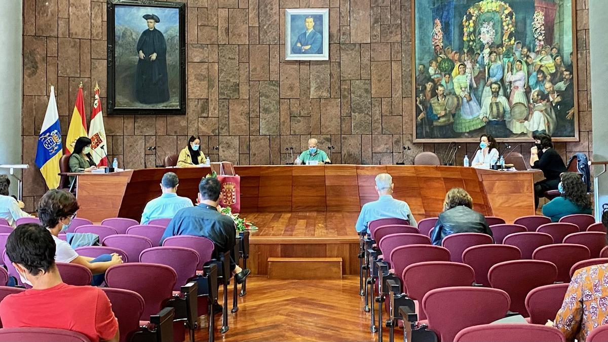 Sesión plenaria del Cabildo de La Gomera.