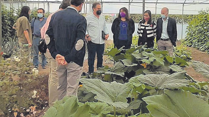 El centro de formación del medio rural de Moraleja se modernizará