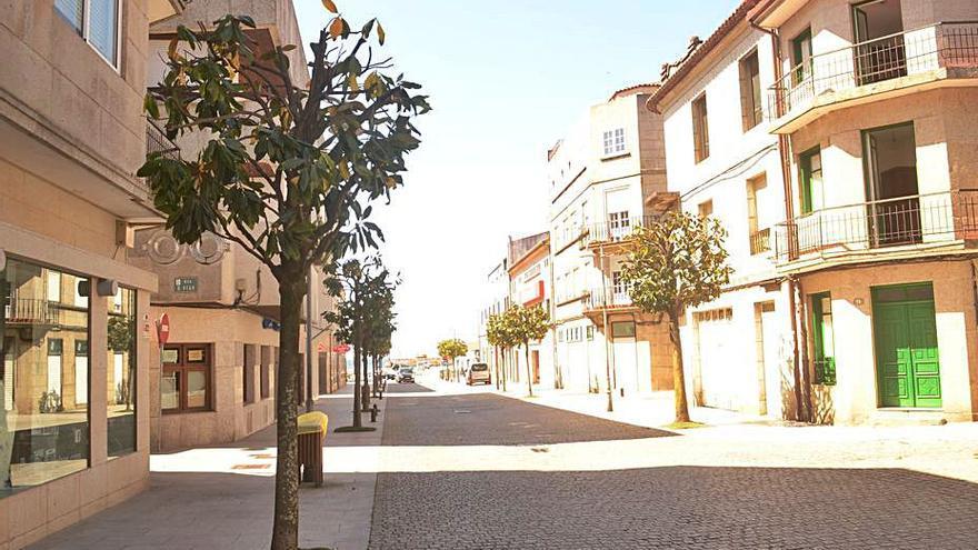 """Malestar en la Rúa Nova por la """"mutilación"""" de los magnolios"""