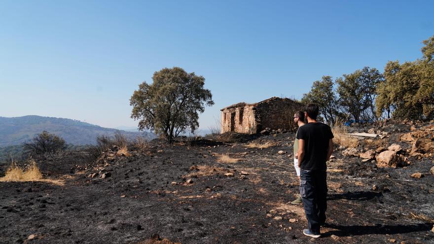 Asaja demanda al Gobierno que sume a Alcaracejos a las ayudas