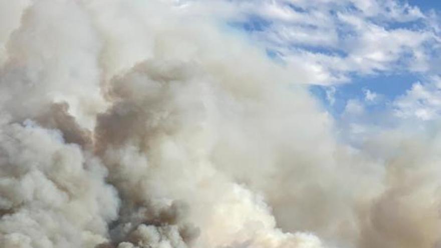 Un incendio en Mula alerta a los bomberos por su cercanía con viviendas de campo